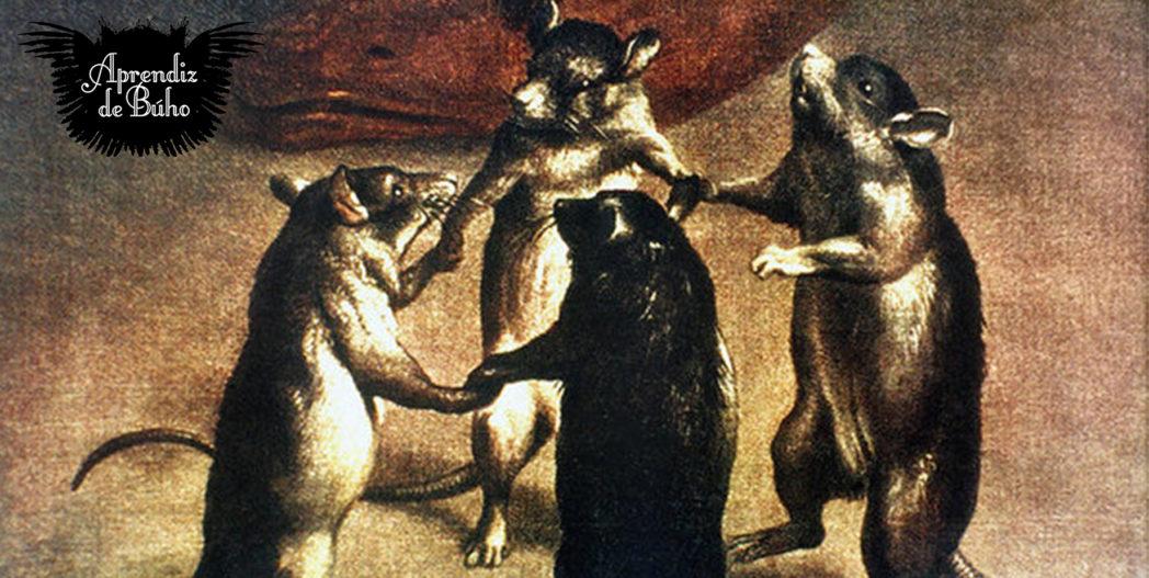 Aprendiz de Búho – Conviviendo con ratas (28/05/2019)